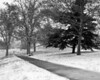 A Walk in the Snow<br /> <br /> December 5, 2007<br /> <br /> Baltimore, MD