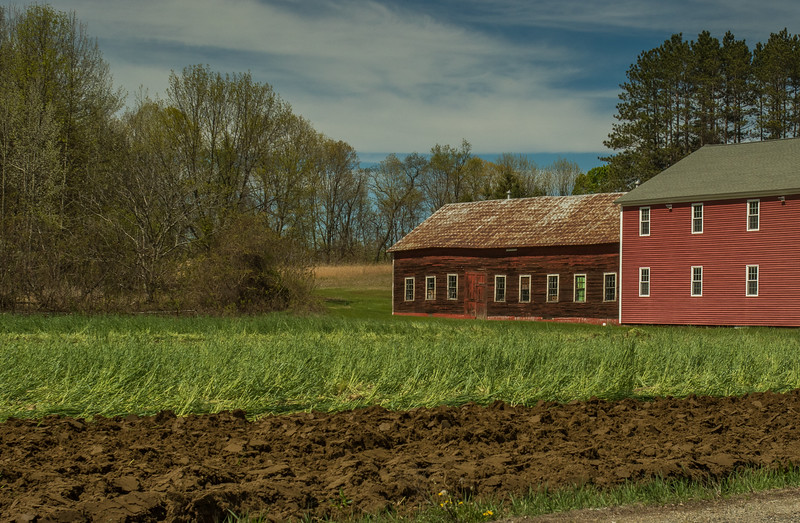 Sunderland Farm