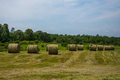 Hay Bales in July