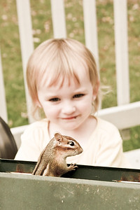 Autumn and the Curious chipmunk