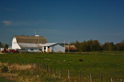 Euclide Quesnel Dairy Farm