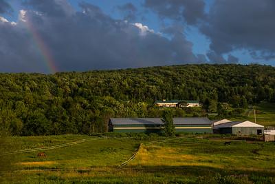 Rainbow Over Horse Farm