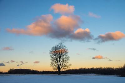 Mid-January