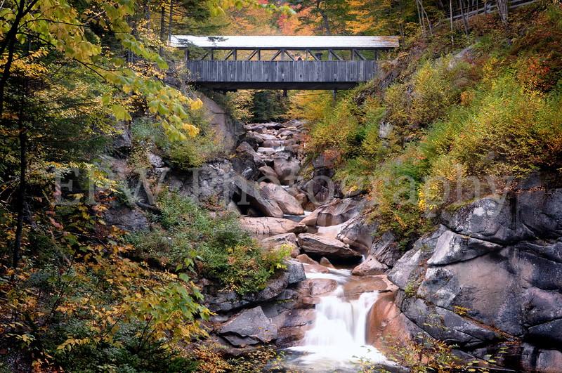 Autumn in New Hampshire VII