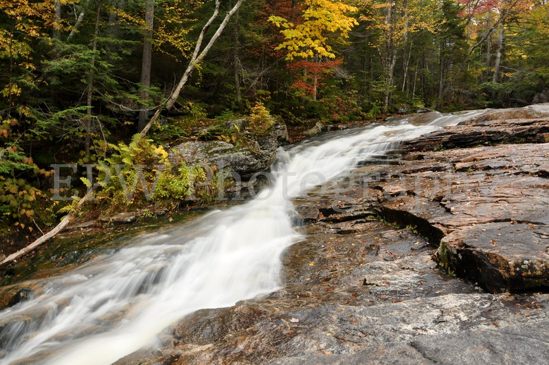 Autumn in New Hampshire IV
