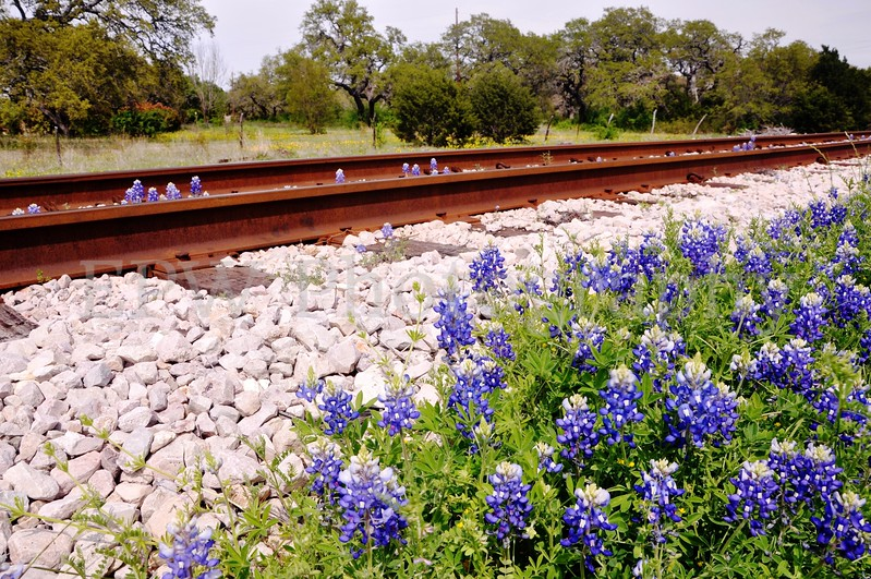 Railroad 5