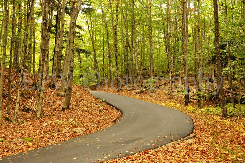 Autumn in New Hampshire V
