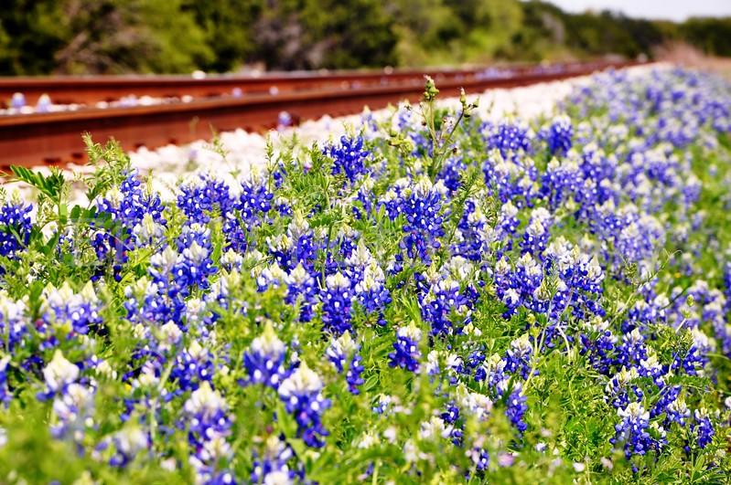 Railroad 4