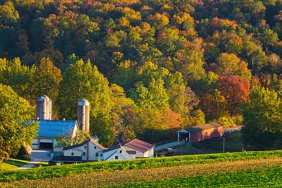 Amish Farm and Covered Bridge