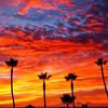 """Sophie's Sunset"".  Manhattan Beach, CA.   11.7.10"