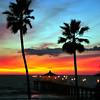 """""""Two Palms"""".  Manhattan Beach Pier, Manhattan Beach, CA"""