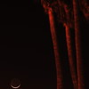 """Crescent Moonlight"". 4/15/10"