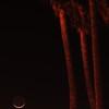 """""""Crescent Moonlight"""". 4/15/10"""