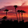 """Pink Palms Sunset"". Manhattan Beach Pier, Manhattan Beach, CA.  Image published on the Front Cover of the ""South Bay Monthly"" Magazine, February 2010 (Manhattan Beach, Hermosa Beach, Redondo Beach & El Segundo Issue)."