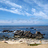 "Along ""17 Mile Drive"".  Pebble Beach, CA."