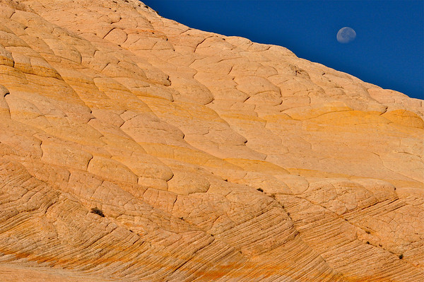 """View From Mars?"".  Moon rising over cross-bedding petrified sandstone, Burr Trail, Boulder Mt, Utah."
