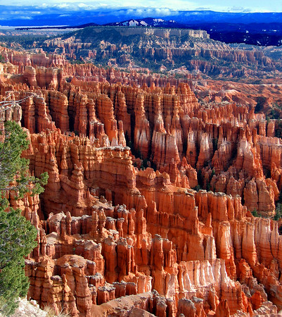 Mid day in Bryce Canyon National Park, UT