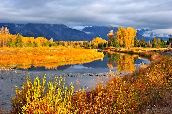"""Liquid Gold Sunrise"".  Schwabacher's Landing, Grand Teton National Park, WY.  10/11"