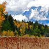 """Autumn Storm Clearing"".  Grand Teton National Park, WY.  10/11"