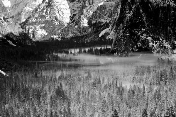 Fog in Yosemite Valley. Yosemite National Park