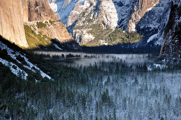 Afternoon fog forming in Yosemite Valley. Yosemite National Park
