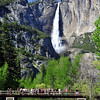 """Waterfall Viewing"".  Yosemite Falls, Springtime."
