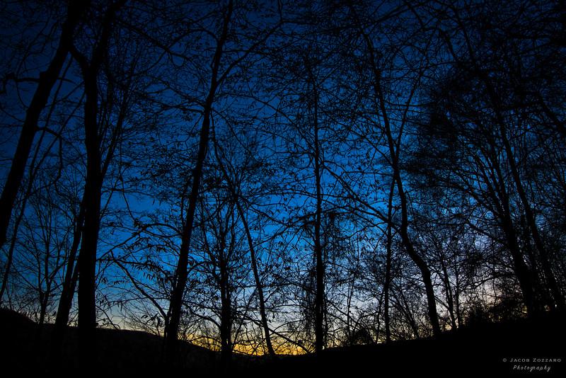 Catskills Evening