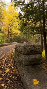Fall foliage at Rockefeller park
