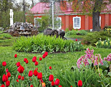 Flowers in the Petherhof castle garden St. Petersburg, Russia