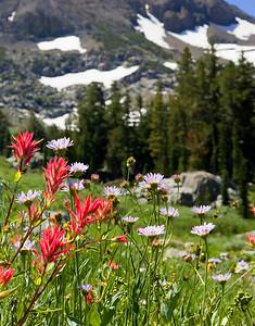 Woods lake trail Carson Pass area Sierra Nevada California