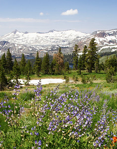 Sierra trail views. Desolation valley Lakes Aloha, Susie, and Gilmore in background