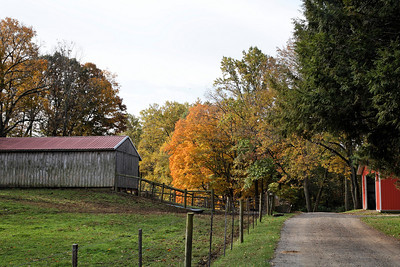 Down the road, past the barn