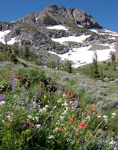 Round Top Mountain Carson Pass area Sierra Nevada Califonia