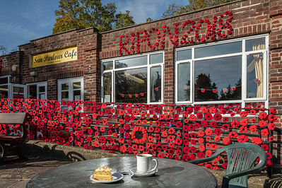 Poppy display on the Sun Parlour Cafe in Ripon's Spa Gardens for this year's Remembrance