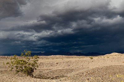 Death Valley Storms