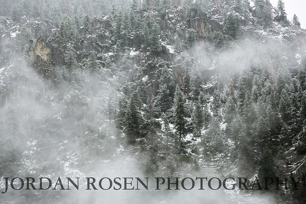 Jordan Rosen Photography-9765