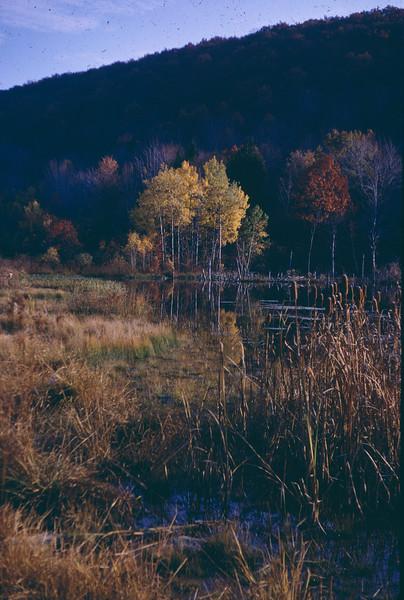 Rye Lake