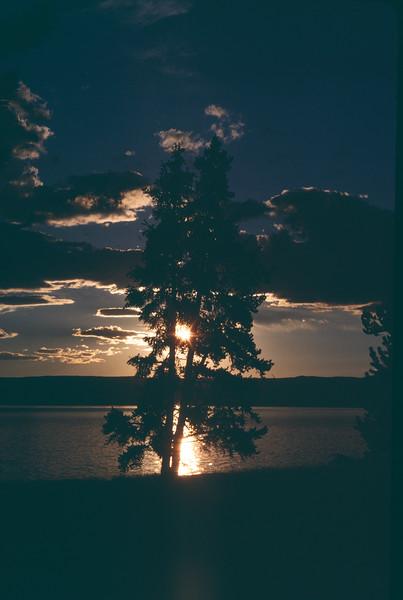 Yellowstone Twilight