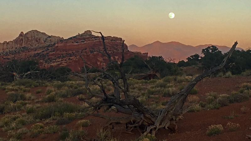 Capitol Reef Moonrise
