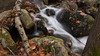 Autumn was well along in Harriman State Park in New York but a wet period had the streams flowing well.