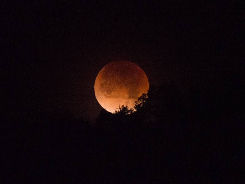 Super/Blue/Blood Moon