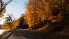 Autumn Road Trip