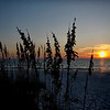 Sun set with sea oats taken near Longboat Key, FL by nature photographer Jerry Dalrymple