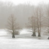 Muscatatuck Nature preserve winter fog taken by nature photographer Jerry Dalrymple