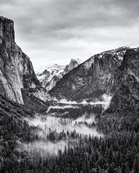 Foggy Yosemite Valley