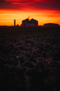 Rural Iowa Sunset