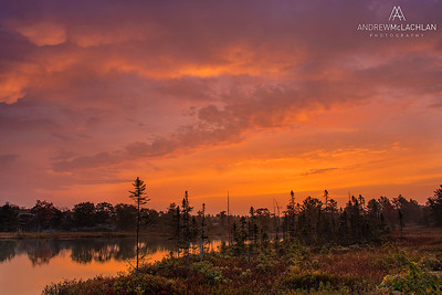 Sunrise over Highland Pond in the Torrance Barrens, Muskoka, Ontario, Canada