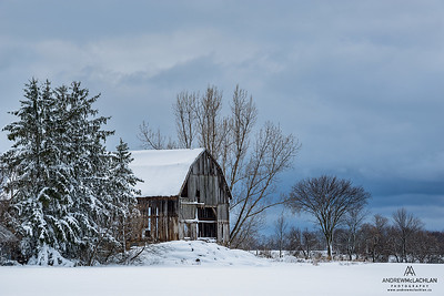 Winter Farm Scene, Thornton, Ontario, Canada