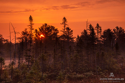 Sunrise in the Torrance Barrens, Muskoka, Ontario, Canada