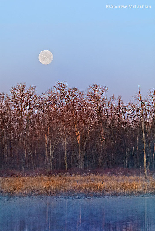Full Moon Over Tiny Marsh in Tiny Marsh Provincial Wildlife Area, Elmvale, Ontario